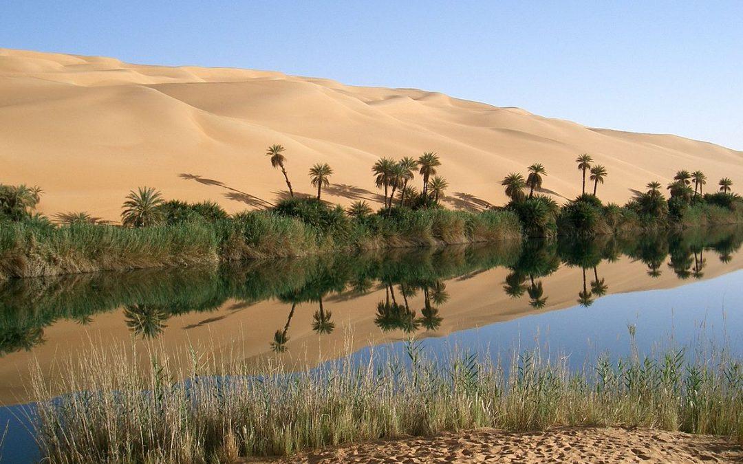 Martin Steffens : la possibilité d'une oasis