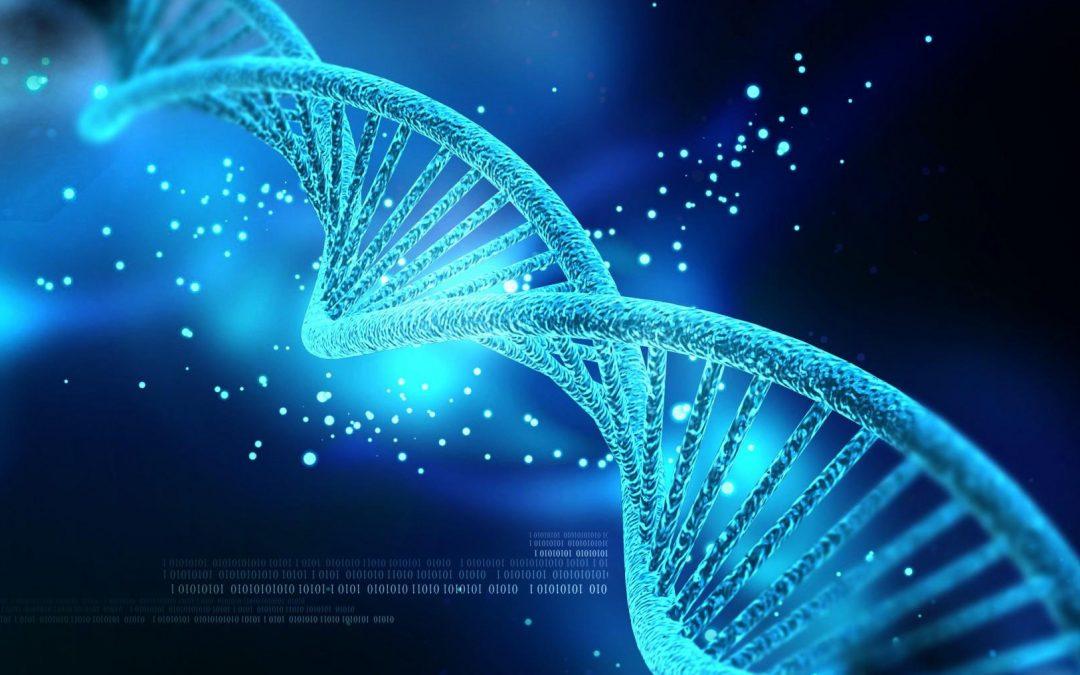 Crise du Coronavirus : va-t-on vers l'instauration d'un biopouvoir ?